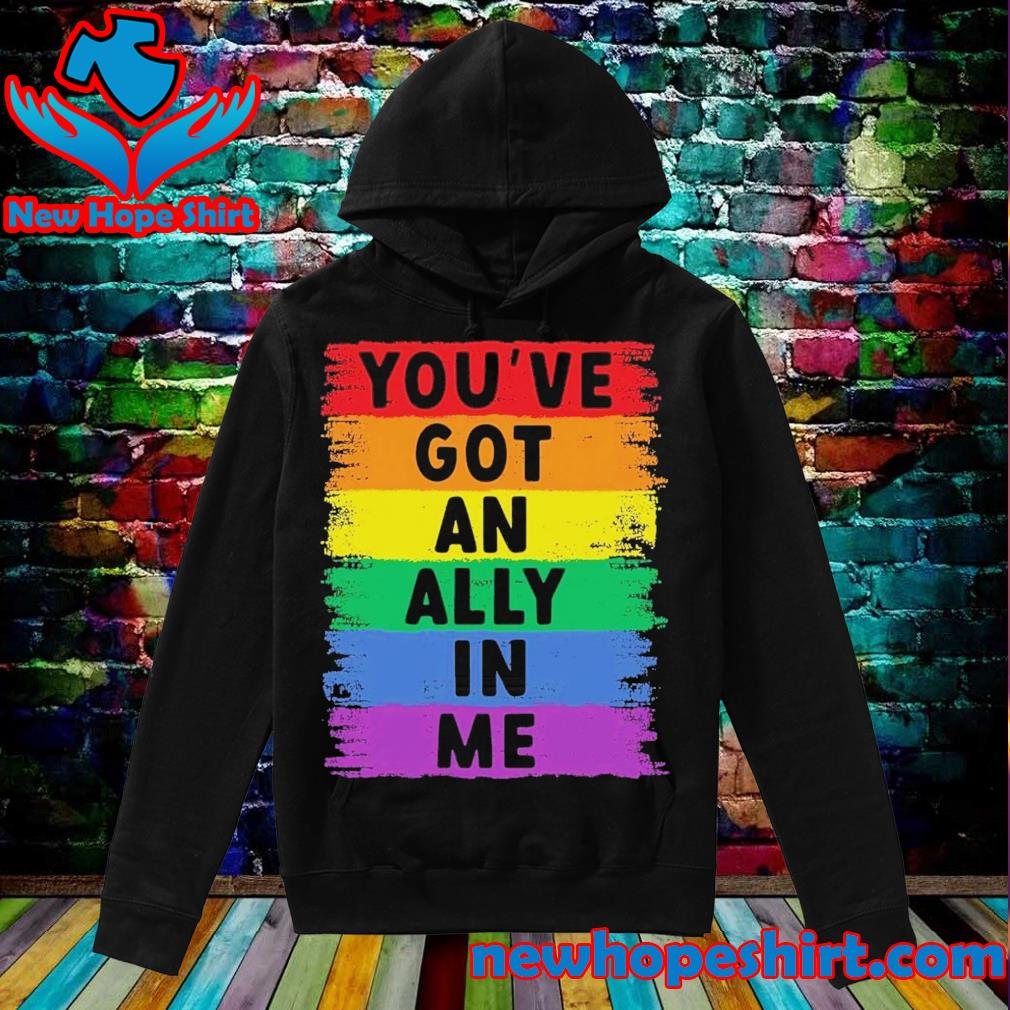 You've got an ally in me LGBT s Hoodie